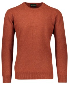 Alan Paine pullover lamswol roestbruin